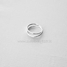 """Earrings Hoop """"Dirvolika"""" AR - 2,0 cm"""
