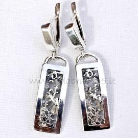 Earrings A584