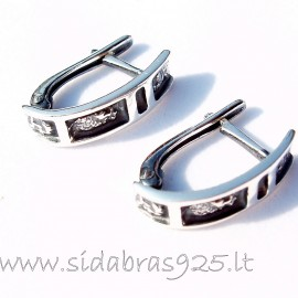 Earrings A219