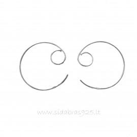 Earrings A209